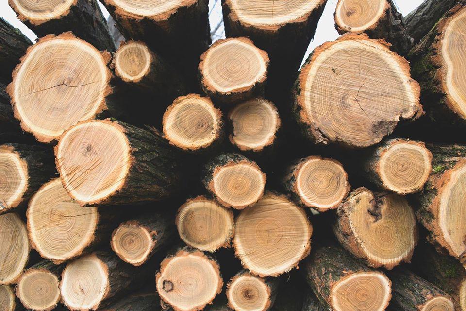 tratamiento-madera