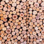 curiosidades-madera